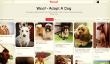 Marques façons nouvelles et excitantes peuvent utiliser Pinterest
