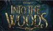 «Into the Woods de New Movie Trailer: Disney Fairy Tale film où Meryl Streep Singing [Visualisez]