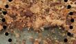 Comment gâcher de cuisson sans gluten