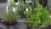 Herb décoration - les 11 meilleures idées de bricolage