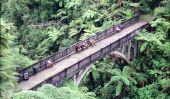 """""""Bridge to Nowhere"""" dans le parc national de Whanganui, Nouvelle-Zélande"""