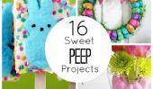 16 douces Peep Projets