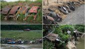 Detroit enrochement: Voitures que le contrôle de l'érosion Abandonné