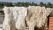 """Costume de mouton: Coudre robe dans """"look de moutons"""" lui-même - comment cela fonctionne:"""