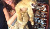«Teen Mom OG 'Cast Nouvelles: Ambre Portwood révèle les plans de mariage, PETA Cibles Farrah Abraham pour Lion Cub photo [Voir]