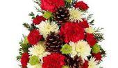 Top 10 des plus beaux bouquets de Noël sur Amazon 2014-15