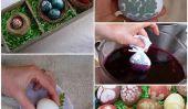 Apprenez à préparer les oeufs avec des colorants naturels dès le jardin