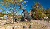 Top 10 des meilleurs zoos aux Etats-Unis