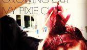 Mon aventure cheveux: Comment faire pousser un Pixie Cut