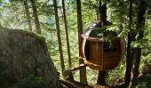 Spectaculaire Treehouse par Joel Allen