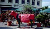 Vaches peintes - comme une ferme de succès de papier mâché