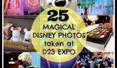 25 Photos magiques de D23 Expo de Disney