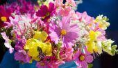 Signification des fleurs - quelle sorte de adapte l'occasion