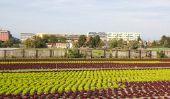 Intensification de l'agriculture - une définition