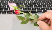 Utilisez l'élément de surprise pour la romance dans la vie quotidienne