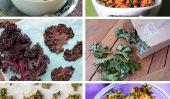 11 incroyable Kale Chip recettes!