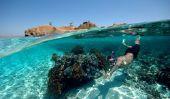 Plongée avec tuba à Dubaï - conseils et des informations pour la plongée avant Khor Fakkan