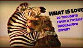 Qu'est-Ce Que L'Amour?  20 Pensées d'un expert Totalement sans réserve