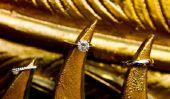 Trouver le propriétaire d'origine de la griffe d'or!  - Pour résoudre la tâche