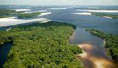 Qu'est-ce que vous appelez la partie de l'estuaire ramifié de la rivière?