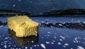 Retirer la sève des arbres de peinture de voiture - comment cela fonctionne: