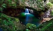 Top 10 des plus exotiques Forêts nuage dans le monde