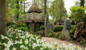 Voir l'incroyable Fairy Tale Treehouse Prince George Gets pour appeler le sien