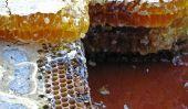 Le miel de Manuka à partir du magasin d'aliments de santé - En savoir plus sur le produit naturel de la Nouvelle-Zélande