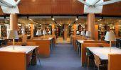 Universités en Amérique - des informations intéressantes sur les universités de l'Ivy League