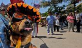 Nouvelles Mexique: le nombre croissant de familles mexicaines classe moyenne optent pour les chiens de plus Enfants