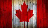 La chanteuse canadienne - Exemples