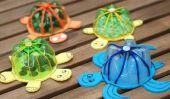Bouteilles en plastique recyclé dans belles tortues