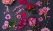 Nouvelle ART: fleurs disposées Soigneusement