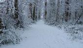 Les avantages de la formation pour un marathon dans les mois d'hiver