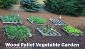 Bois palettes Jardin potager