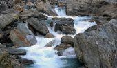 Quels rivières proviennent dans les Alpes?