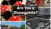 Comment savez-vous Vous êtes une Disneyphile?