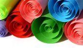 Tinker Fleurs Anniversaire