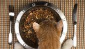 Les chats peuvent manger des patates?
