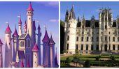 13 logements Real-Vie Princesse Disney
