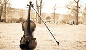 Il a rétabli violon - parce que vous devriez penser