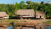 Les peuples autochtones de la forêt tropicale