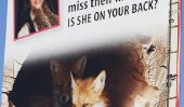 Célébrités et Peta mobilisent contre la fourrure - Kim Kardashian va le collier