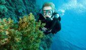 Créer un plan de formation pour la plongée - Apnée