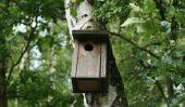 Instructions de montage - nichoir pour les perroquets