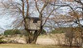 Construire la maison de l'arbre lui-même, sans blesser l'arbre - si nous allons avec cordes