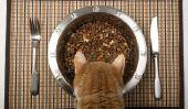 Ouvrez la viande mélangeur Bowl pour chats - vous devriez noter