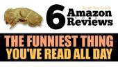Amazon Avis de ces 6 les aliments sont les choses les plus drôles que vous avez lu toute la journée
