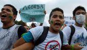 Field Guide to Les protestations au Brésil