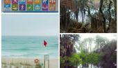 Mon histoire d'amour avec Parcs Florida State